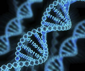 DNA strand wity binary code_web
